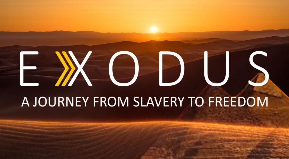 Exodus Week 4 (8/16/2020)